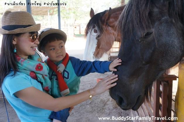 พาลูกเที่ยวเขาใหญ่, ที่เที่ยว, เด็ก, เขาใหญ่, ฟาร์มหมอปอ, ม้า