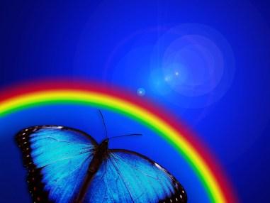 16.01.24 - butterfly - Copy