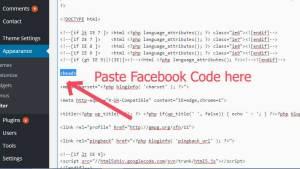 FacebookPasteWordPress