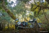 bhimtal-mukteshwar-8989