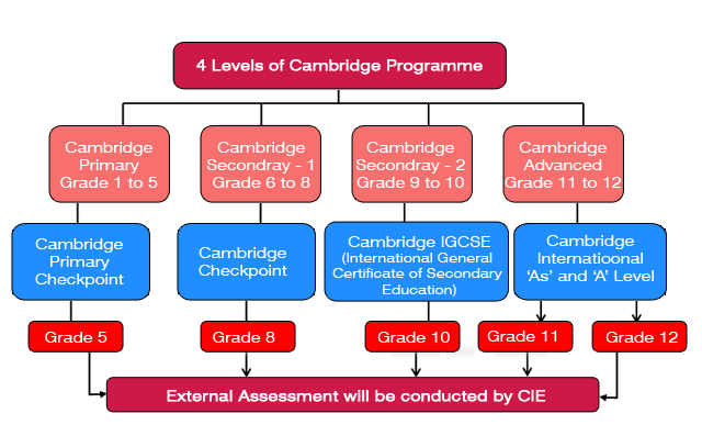 Cambridge Examination Grade 1 to 12