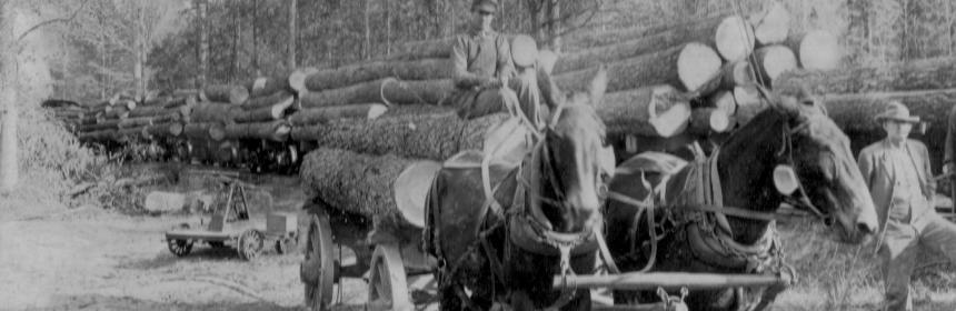 logging-wagon