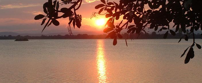 Sinhalese of Sri Lanka