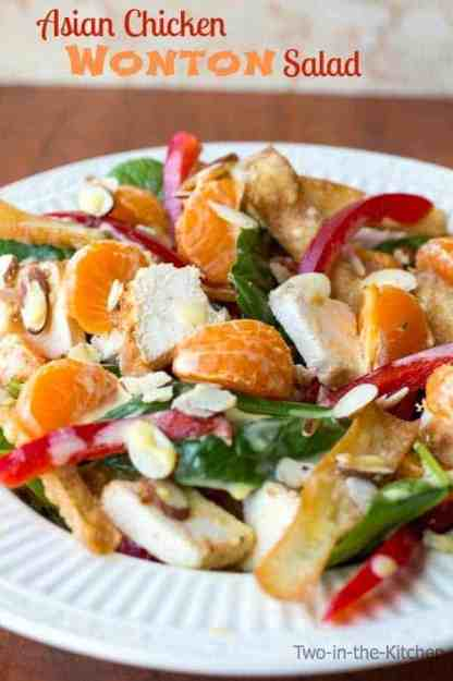 Asian-Chicken-Won-Ton-Salad-Two-in-the-Kitchen-v