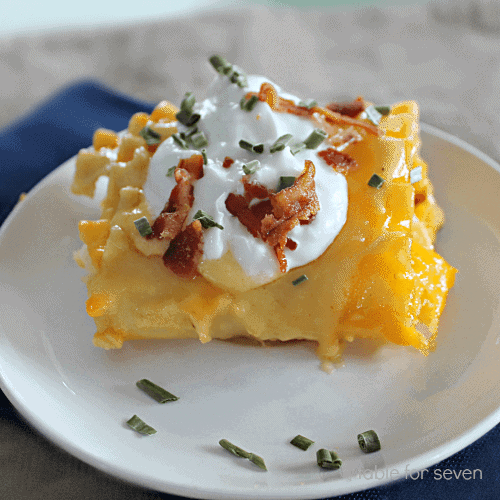 pierogi-lasagna-rolls1-1