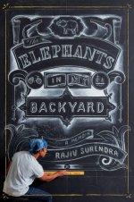rajiv-surendra-elephants-backyard