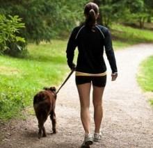 amc-walking-dog-300x292