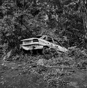 An abandoned car near village of Mantisone in the Dja Faunal Reserve, Cameroon.