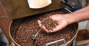 Why 'exotic' Papua New Guinea coffee has greater export potential