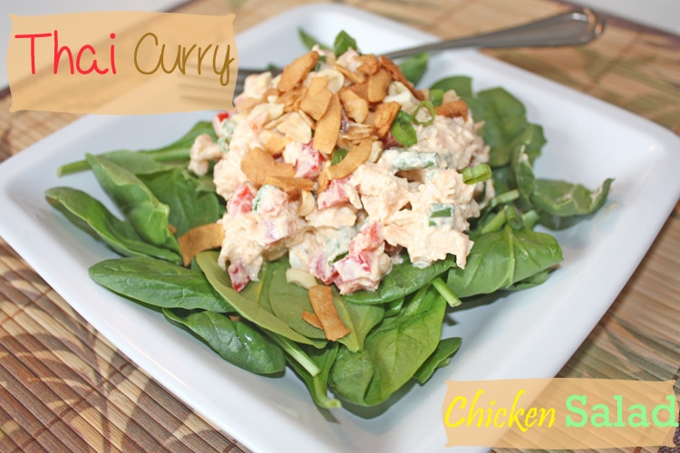 Thai Curry Chicken Salad_main