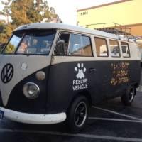 1967 VW Bus 11 Window Walk-through