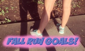RunDiaryFallGoals