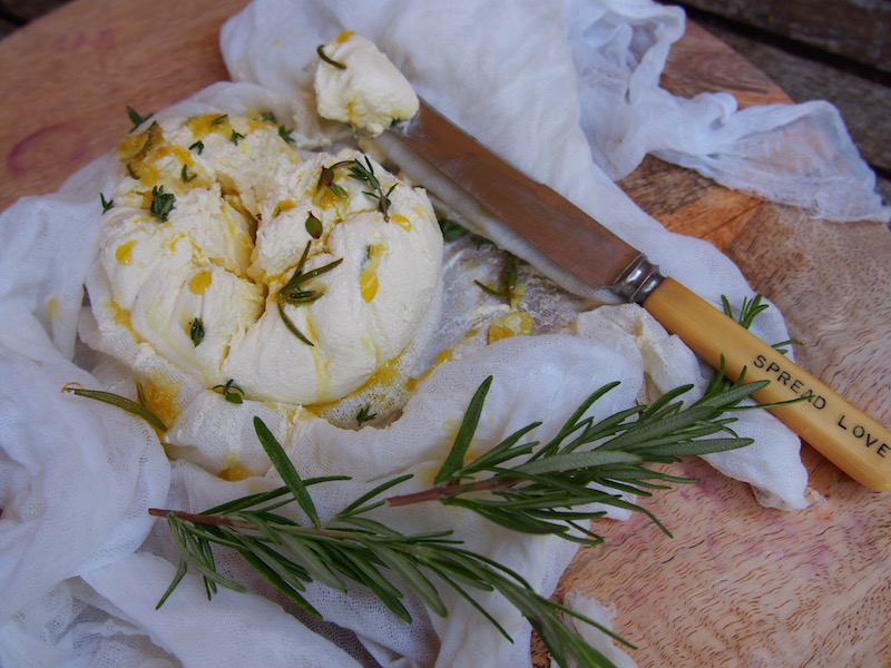 Homemade Labne with Lemon, Garlic, Rosemary & Thyme, Recipe By Rosie over on www.therosedogblog.me