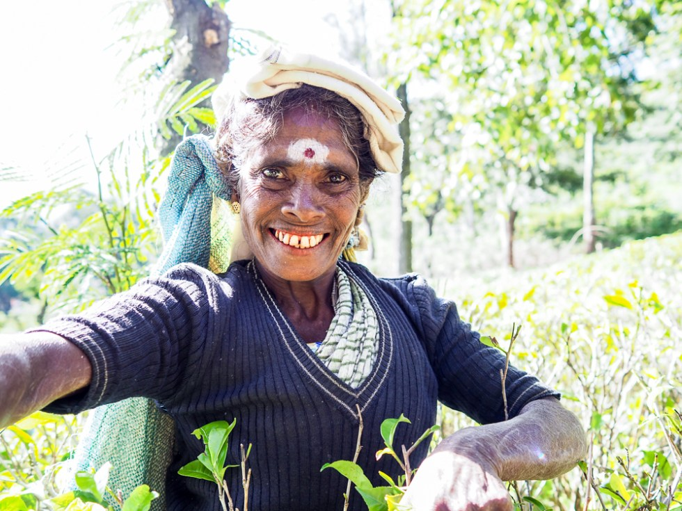 Tea Picker, Ella, 5 tips to stay healthy whilst travelling, www.by-rosie.com