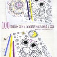 100 Pagini de colorat (gratuite) pentru adulti si copii