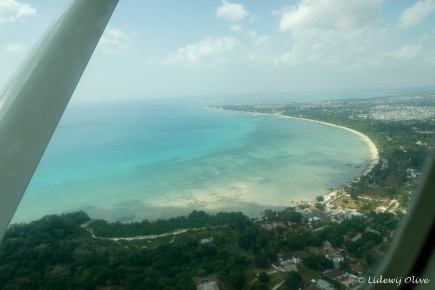 View of zanzibar from the plane