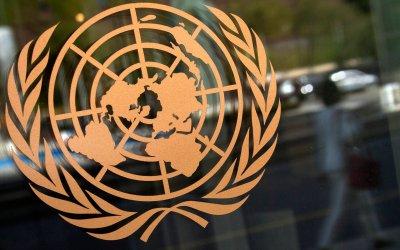Organizaciones presentan informe alternativo sobre derecho de las personas con discapacidad ante Naciones Unidas