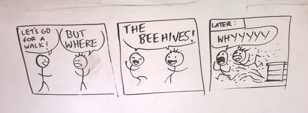 The Beehives