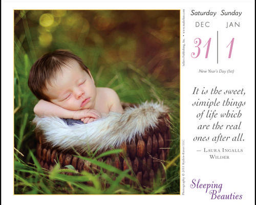 tracy-kelly-baby-desk-calendar-2012