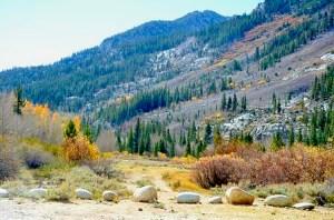 Surveyors Meadow (10/15/14) Jared Smith