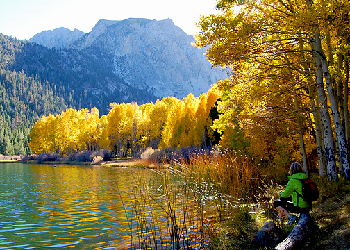 Little Walker Lake (10/19/14) Alicia Vennos