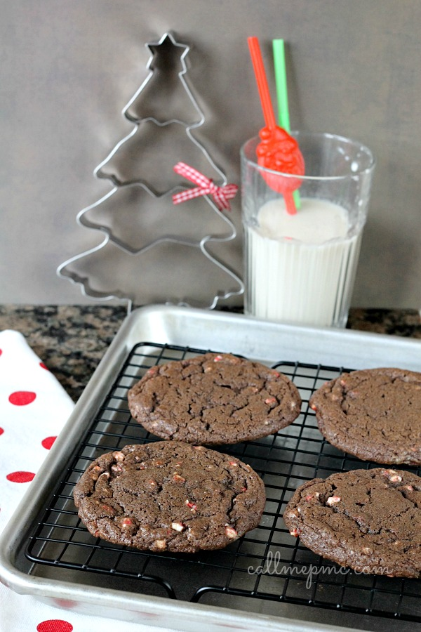 Chocolate Peppermint Chip Cookie Recipe