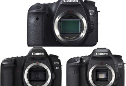 Canon Eos 7D Mark Ii Vs 70D