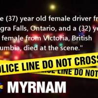 RCMP Investigate Fatal MVC at Highway 45 and Highway 881; Dog Runs Away Following Collision