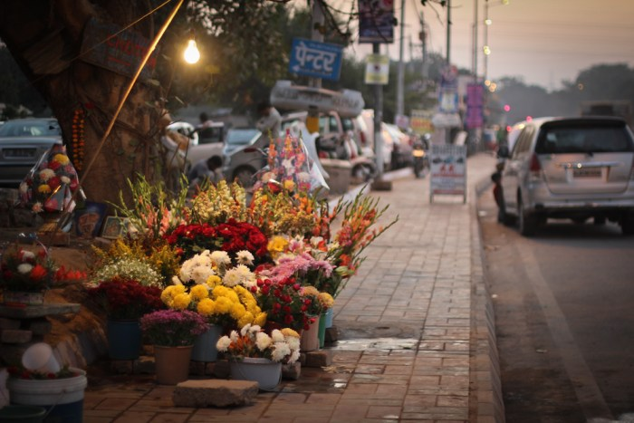 Flower seller in India