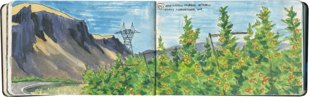Chandler O'Leary travel sketches