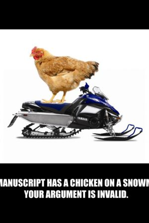 SnowmobileChick