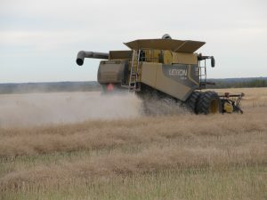 Five steps to prep for lower losses this harvest | Canola Watch – Free, Unbiased, Timely and ...