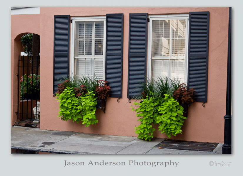 Wordless Wednesday #011: Charleston Row