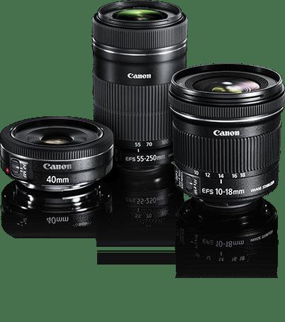 Canon STM Lenses