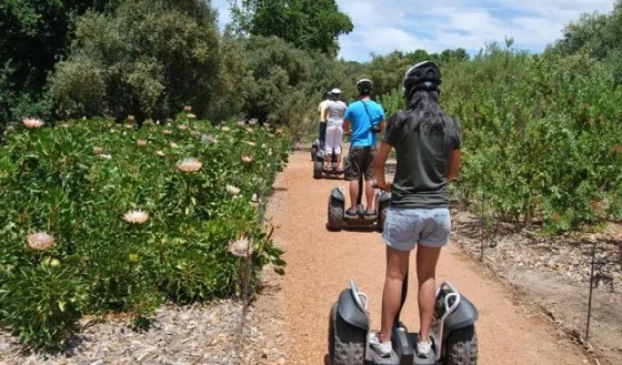 segway tour in cape town