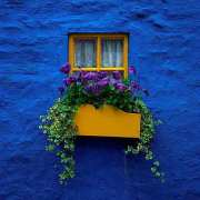 Irish Village Window