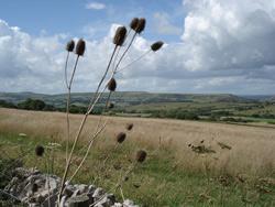 View from Kingston Towards Corfe Castle