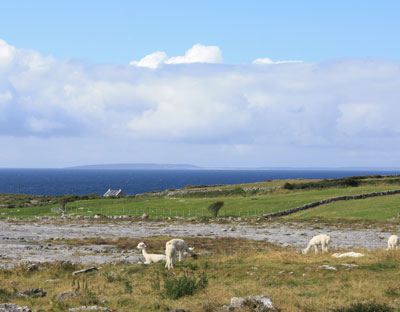 Ireland touring site