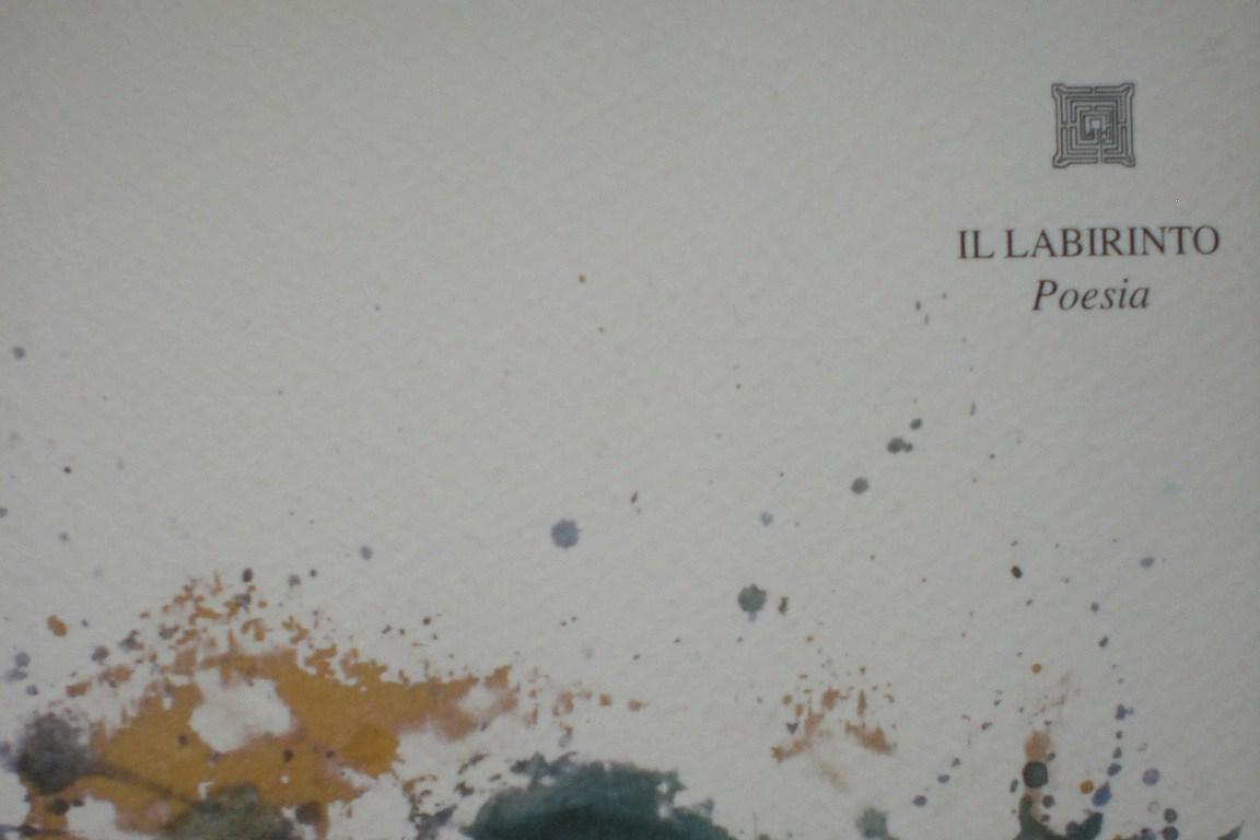 gino-scartaghiande-copertina