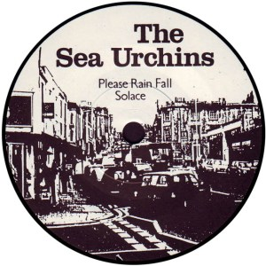 the-sea-urchins-please-rain-fall-sarah
