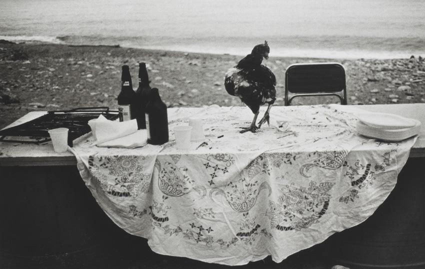 Nella-spiaggia-dell'Arenella-la-festa-è-finita-1986