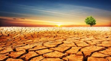 drought, water, desert, drought emergency