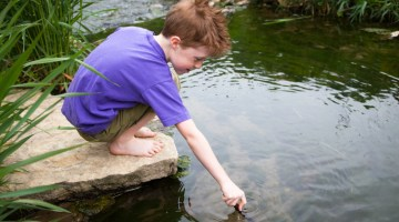 Child, creek, water, river, nature, environment, sustainability, elementary school, stream,