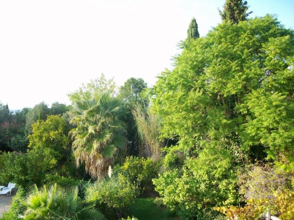 Uitzicht over de tuin van Casa Amigo