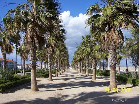 Valencia boulevard