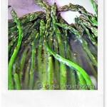 Ricette veloci: asparagi selvatici in padella