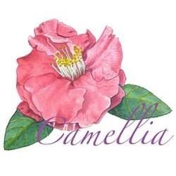 Casart coverings Camellia Botanical temporary wallpaper
