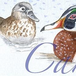 Casart coverings Element: Ducks no. 3 – Gulf Coast Designwater & wording_4