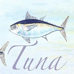 Casart coverings Element: Tuna no. 6 – Gulf Coast Design