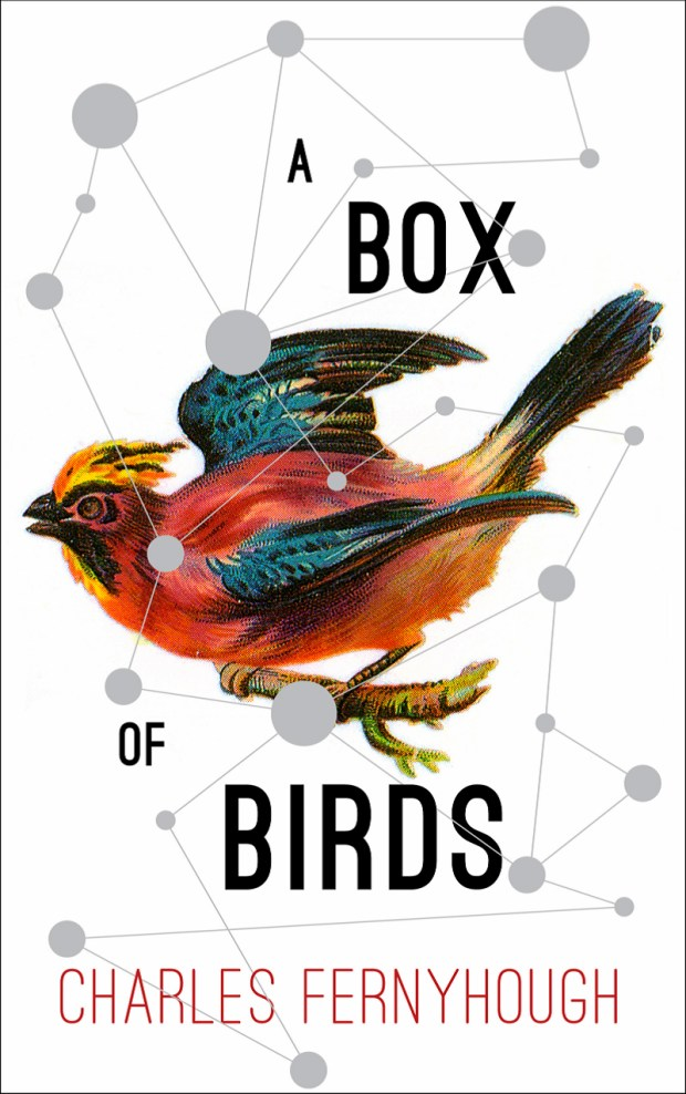 box-of-birds